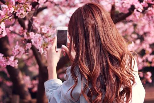 お花見デートで気を付けるポイント